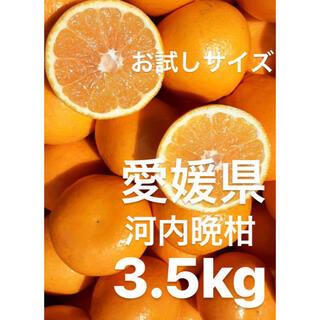 愛媛県 宇和ゴールド紅 河内晩柑 3.5kg(フルーツ)