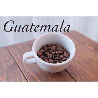 [専用出品]グアテマラ300g お試し豆(コーヒー)