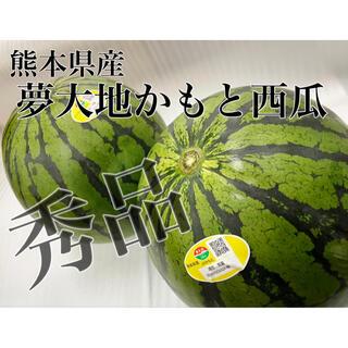 光糖度センサー選果品!!【夢大地鹿本西瓜】秀品 Lサイズ 2玉箱込み13.5kg(フルーツ)