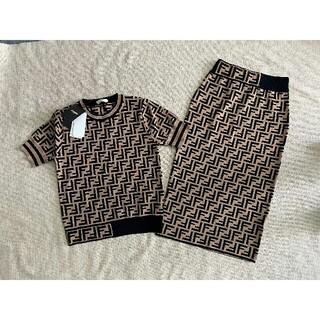 FENDI - 新品大人気 FENDIフェンディ セーター 2点セット ニット 薄い M