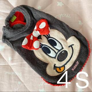 ディズニー(Disney)のミニーちゃん 4S(犬)