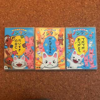ノンタン DVD 3枚セット
