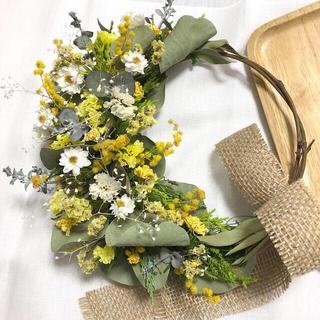 m♡様専用ミモザと黄色い小花のリース♡ドライフラワーリース(ドライフラワー)