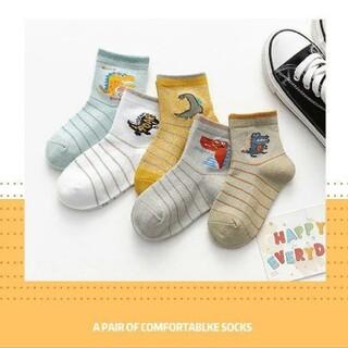 横恐竜デザインのかっこいい子供靴下5足セット