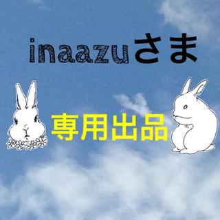 SHISEIDO (資生堂) - 資生堂 HAKU メラノフォーカスZ 本体 45g リニューアル品 未開封品