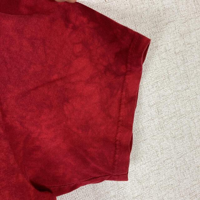 ザ マウンテン アニマルプリント Tシャツ イーグル 鷹 ダイダイ染め メンズのトップス(Tシャツ/カットソー(半袖/袖なし))の商品写真