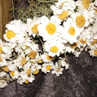 花かんざし (ドライフラワー)