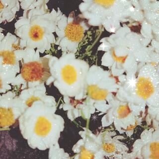 花かんざし(ドライフラワー)