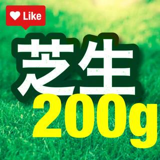 【説明書つき】高級芝生の種200g(4平米) 耐暑性あり!冬でも青い西洋芝生(その他)