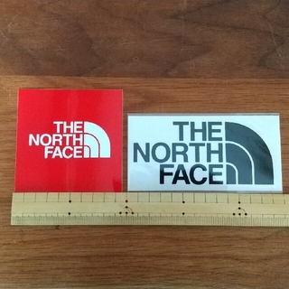 THE NORTH FACE 2枚セット(その他)