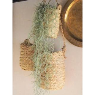 アクタス(ACTUS)の新品未使用 Morocco hanging basket ハンギングバスケット(バスケット/かご)