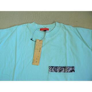 エアロポステール(AEROPOSTALE)の「AERO POSTAIL Tシャツ」新品・未使用(Tシャツ/カットソー(半袖/袖なし))