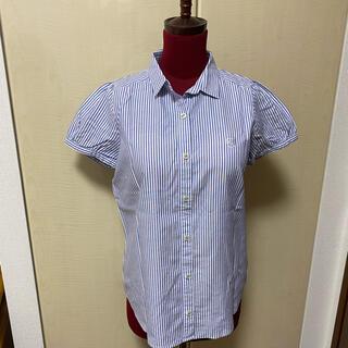 バーバリーブルーレーベル(BURBERRY BLUE LABEL)のバーバリーブルーレーベル レディース半袖シャツ(シャツ/ブラウス(半袖/袖なし))