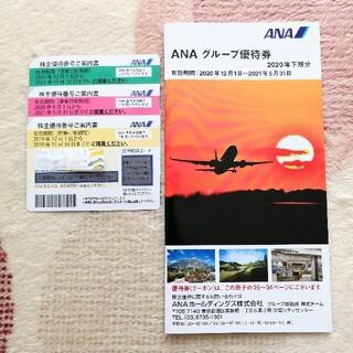 ANA ホールディングス株式会社 株主優待券 3枚、グループ優待券 1冊(その他)