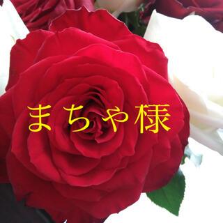 まちゃ様専用 7/11 愛知県(その他)
