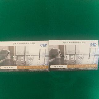 日本駐車場開発 日本スキー場開発 温泉 割引券 2枚(その他)