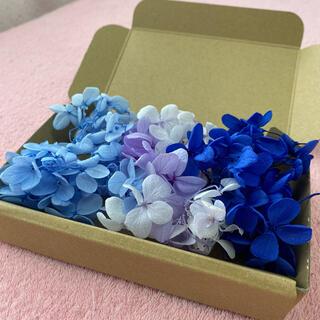 紫陽花 ドライフラワー ブルー系(ドライフラワー)