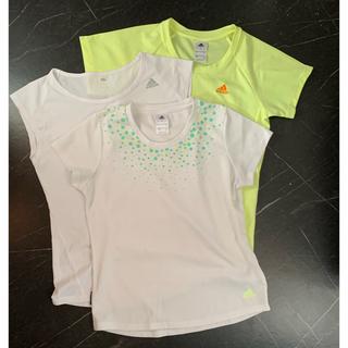 アディダス(adidas)のadidas レディース Tシャツ M 3枚セット(Tシャツ(半袖/袖なし))