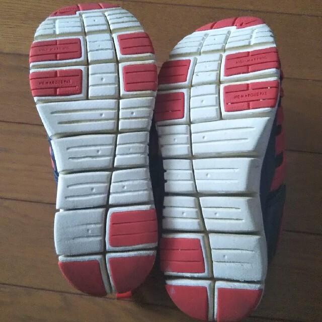 NIKE(ナイキ)のナイキ ダイナモフリー 22 キッズ/ベビー/マタニティのキッズ靴/シューズ(15cm~)(スニーカー)の商品写真