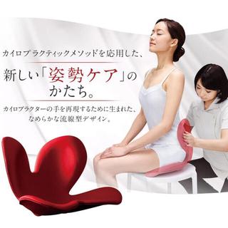 スタイルコム(Style com)のMTG 骨盤サポートチェア Body Make Seat Style(座椅子)