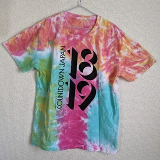 フェスTシャツ(2018年 COUNTDOWN JAPAN)(ミュージシャン)