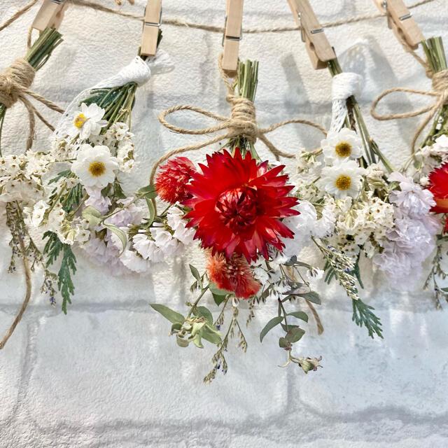 ドライフラワー スワッグ ガーランド❁243赤ホワイト真紅ヘリクリサム白 花束 ハンドメイドのフラワー/ガーデン(ドライフラワー)の商品写真