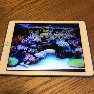 Apple - APPLE iPad Pro 9.7 WI-FI+CELL 128GB