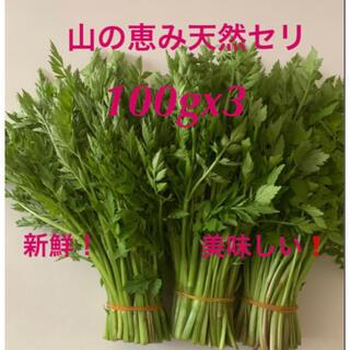 無農薬、無添加、健康、兵庫県産天然セリ100gx3‼️(野菜)