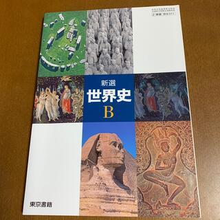 トウキョウショセキ(東京書籍)の新選 世界史B(語学/参考書)