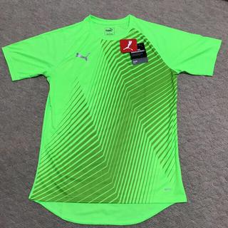 プーマ(PUMA)のプーマTシャツDryCell  Mサイズ❣️(Tシャツ/カットソー(半袖/袖なし))