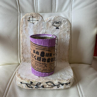 モルタルリメイク缶15 パープル リメ缶 多肉 ハンドメイド リメイク鉢 リメ鉢(プランター)