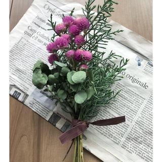 ユーカリと千日紅のグリーンスワッグ、初夏のお花スワッグ 2点 もこた様専用(ドライフラワー)