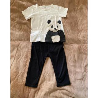 MUJI (無印良品) - Tシャツとパンツ