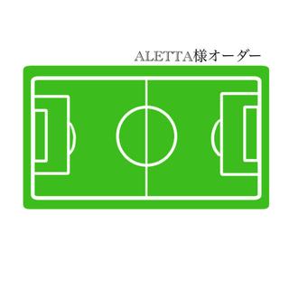 【ALETTA様】 サッカーボール ボールホルダー ボールネット ボール入れ(ボール)