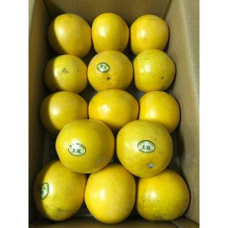 グレープフルーツ7玉&ルビーグレープフルーツ7玉(フルーツ)