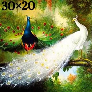 ダイヤモンドアート 30×20