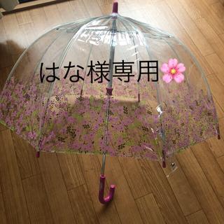 フルトン【子供用傘】(傘)