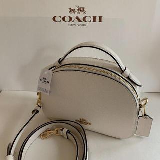 COACH - ★新品!コーチ/整理収納可コロンと可愛い♪ミニ2WAYショルダーバッグ