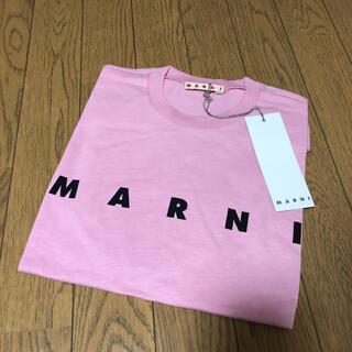 マルニ(Marni)の新品タグ付 MARNI マルニ ロゴ Tシャツ キッズ 14Y M(Tシャツ(半袖/袖なし))