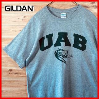 GILDAN - 【春夏】カレッジ GILDENギルダンtシャツ  半袖Lアメリカ古着グレー