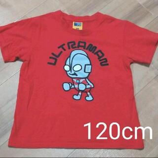 BANDAI - ウルトラマン Tシャツ120cm