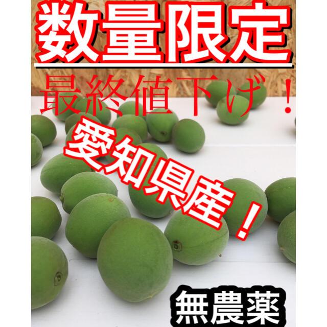 【梅約1.5kg】愛知県産※無農薬 食品/飲料/酒の食品(フルーツ)の商品写真