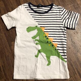 kladskap - クレードスコープ 恐竜 Tシャツ 120