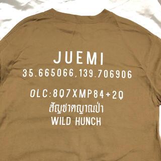 アリシアスタン(ALEXIA STAM)のjuemi ガソリンTシャツ ロング ベージュ(Tシャツ(長袖/七分))