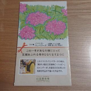 お花の種 イベリス・ウンベラータ