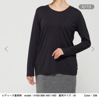 ザノースフェイス(THE NORTH FACE)のIcebreaker 長袖Tシャツ (Tシャツ(長袖/七分))