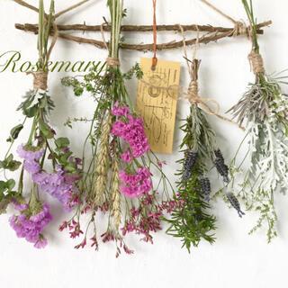 香り立つ無農薬 ローズマリーの木でできたガーランド ハーブとラベンダースワッグ