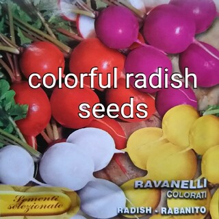 カラフルラディッシュ種子 8種ミックス(野菜)