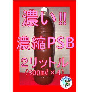 濃縮PSB 2.0L 植物の活力剤 ガーデニング 現代農業 ハーブ 多肉植物(その他)