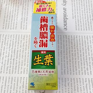 コバヤシセイヤク(小林製薬)の生葉 未開封 未使用(歯磨き粉)